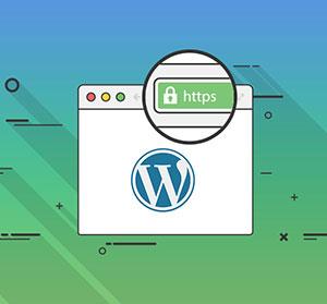 افزودن SSL و https در وردپرس
