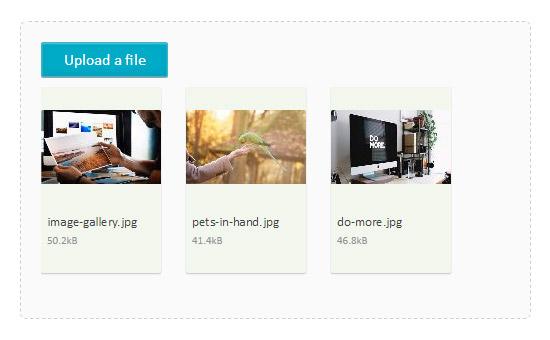 آپلود چندگانه فایل در php با Fine Uploader